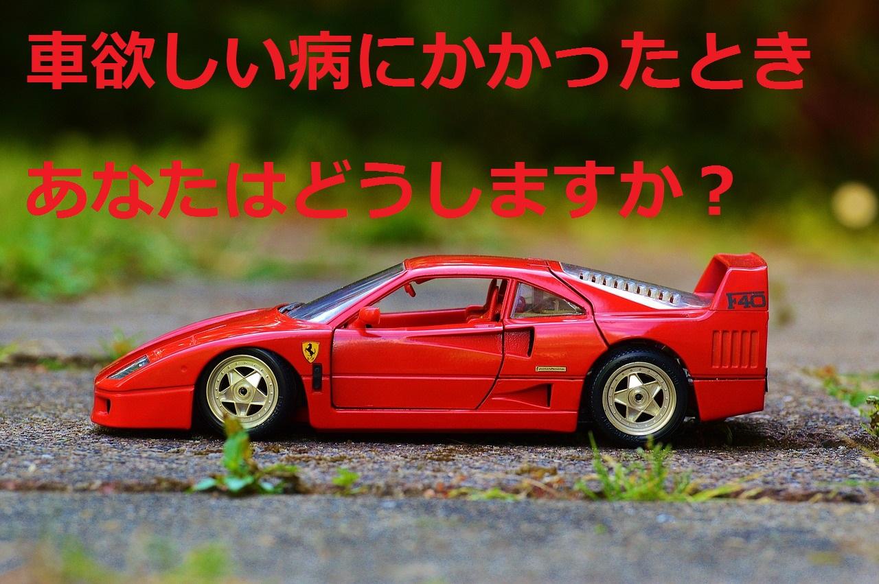 want_a_car